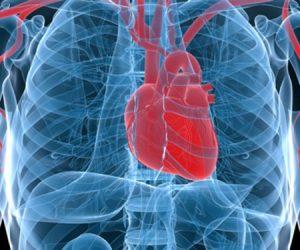 Cardiology & Cardiovascular